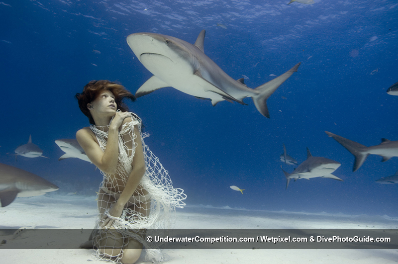 Our World Underwater 2007 Winning Image by Todd Essick