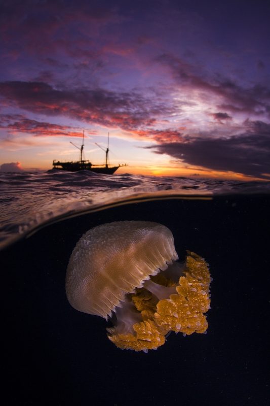 DEEP Indonesia 2018 Winning Image by Alex