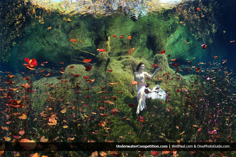 Our World Underwater 2011 Winning Image by Anatoly